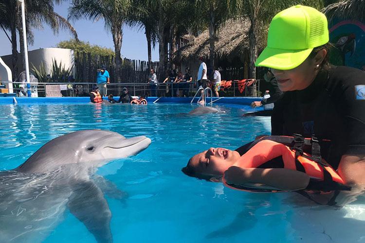 terapia-con-delfines.jpg
