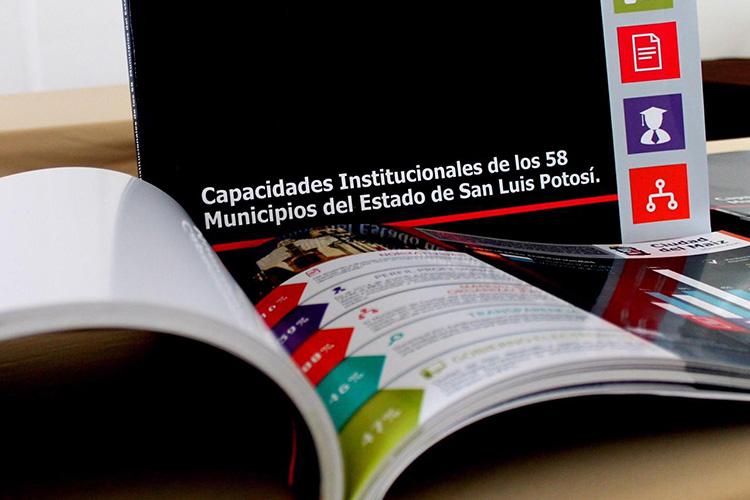capacidades-institucionales.jpg