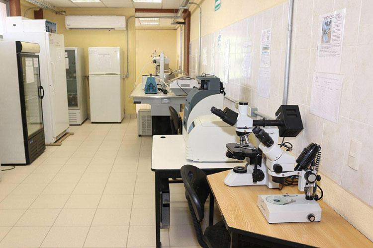 laboratorio-clinica.jpg