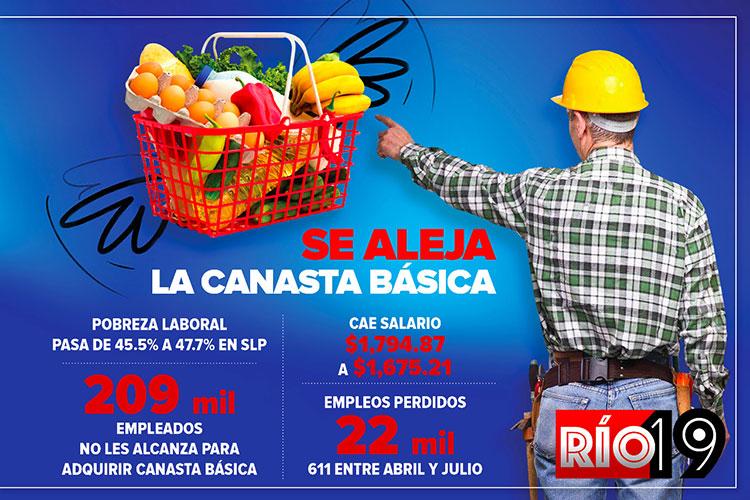 aleja-canasta-basica.jpg